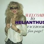 Helianthusny.com