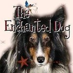 Enchanted Dog
