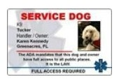 Service Dog Gear coupons or promo codes at servicedoggear.com